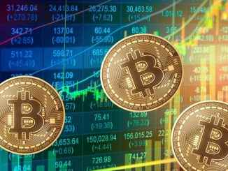 Bitcoins monedas digitales