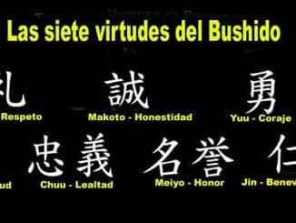 አንዳንድ የ <Bushido> ገፅታዎች በአሁኑ ጊዜ ማህበረሰብን ተግባራዊ ማድረግ ብዙ ችግሮችን ይፈታል.