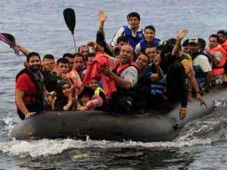 Мигранттар маған келсін!