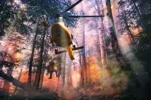 En los incendios unos pocos ganan demasiado y otros lo pierden todo