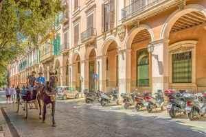 Palma de Mallorca : la autoridad local ha conseguido detrimento comercial en todos los sectores
